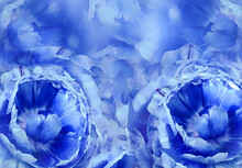 Floral  Blue  Background. A Bo...