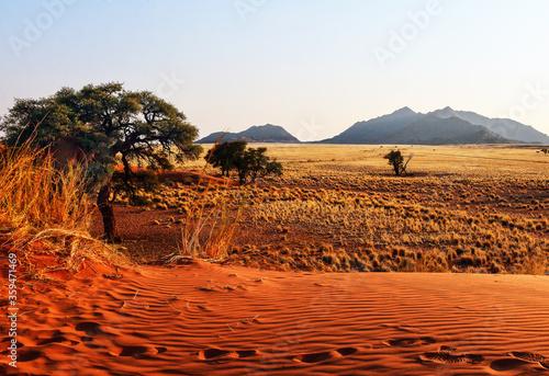 Morgenstimmung im Namib Naukluft Nationalpark, Namibia Canvas Print