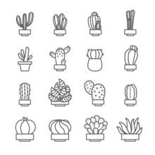 Cactus Icon Set , 16 Line Of C...