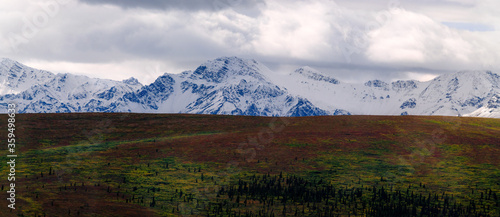 A snow covered mountain range rises above the Alaskan tundra.
