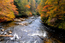 Autumn On An Appalachian River