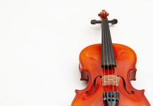 Violin Closeup On White Background