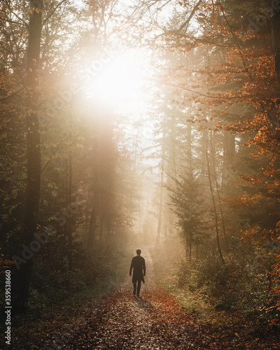 man walking in the autumn woods - 359538660