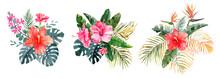 Set Of Tropical Exotic Bouquet...