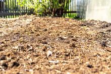 Organic Soil Fertilization To Improve Soil Structure And Preserve The Ecosystem, Selective Focus