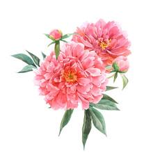 Beautiful Vector Floral Bouque...
