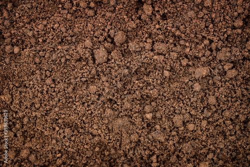 Fotomural fertile land background, soil texture in garden