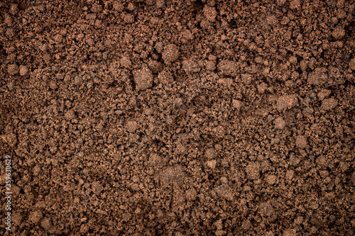 Fotografia fertile land background, soil texture in garden