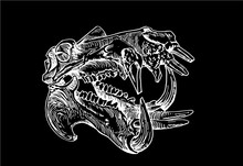 Graphical Skull Of Hippo Isolated On Black, Vector Engraved Illustration For Tattoo ,typography And Design