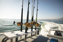 Fishing Rods Standing Up On A Boat On A Sunny Day