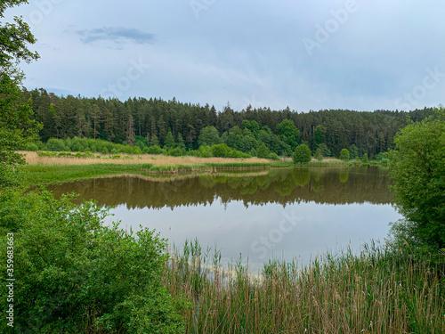 Fototapeta lake in the forest obraz na płótnie