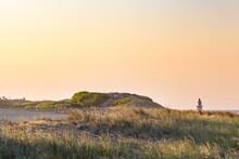 Summer East Coast Dunes Sunset