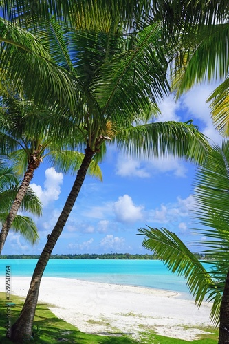 Fotografiet View of a tropical landscape with palm trees, white sand and the turquoise lagoo