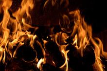 Hot Vivid Burning Birch Logs I...
