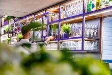 Barkeeper Hinter Der Bar Im Re...