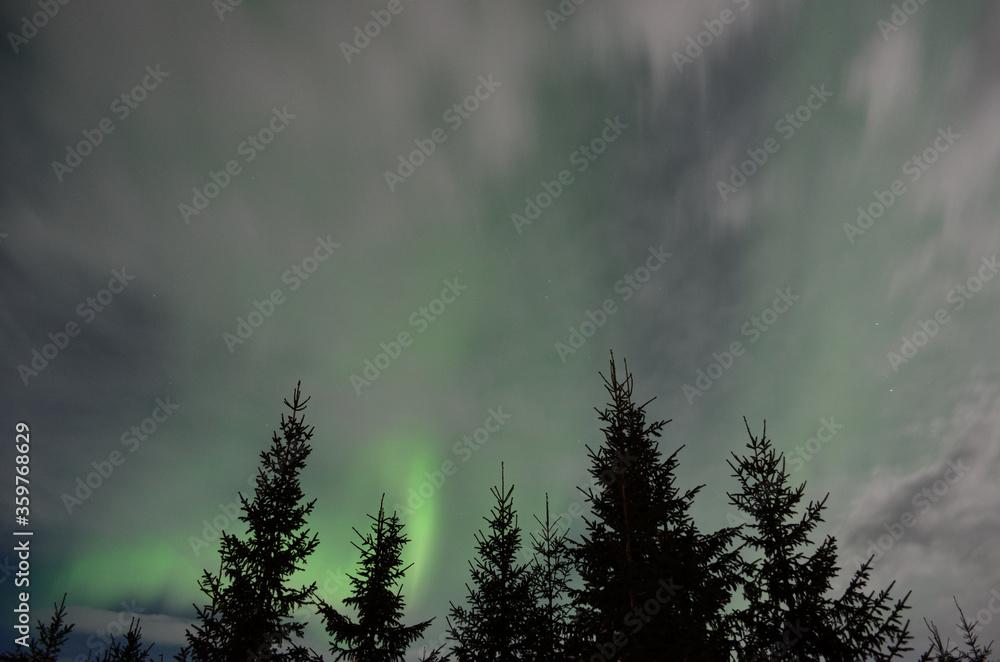 majestic aurora borealis in arctic circle winter landscape