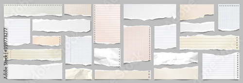 Obraz Colored ripped lined paper strips collection. Realistic paper scraps with torn edges. Sticky notes, shreds of notebook pages. Vector illustration. - fototapety do salonu