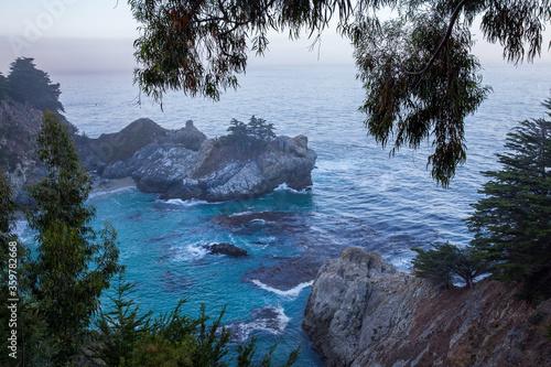 hidden beach framed by trees