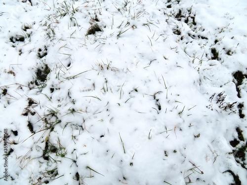 日本の田舎の風景 2月 雪の降った日 草叢 Canvas-taulu