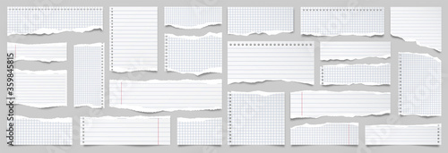 Obraz White ripped lined paper strips collection. Realistic paper scraps with torn edges. Sticky notes, shreds of notebook pages. Vector illustration. - fototapety do salonu