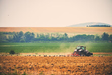 Tractor And Feeding Storks In A Field, Agriculture Landscape