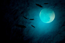 Full Moon With Blue Halloween ...