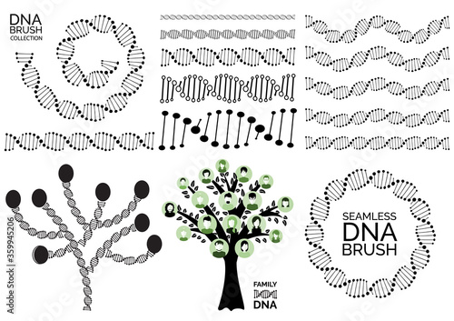 Genealogy tree for dna ancestors illustration isolated Wallpaper Mural