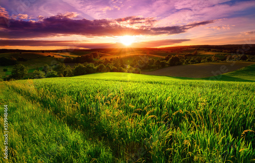 Fototapeta Sunset scenery on a green field with forests and hills on the horizon and the sky painted in gorgeous dramatic and emotional colors obraz