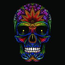 Vector Color Sugar Skull Illustration