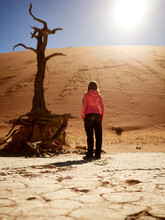 Woman And A Tree In The Desert...