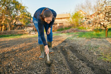 Full Length Of Woman Using Hand Plow On Soil While Gardening During Weekend