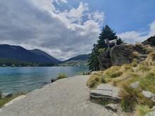 Lake Waktipu