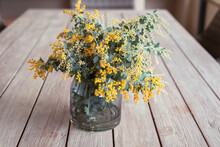 Wattle Flowers In A Vase