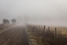 Misty Dirt Road