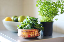 Green Mint And Parsley Herbs O...
