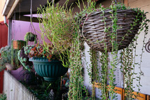 Verandah With Potted Hanging Basket And Plants