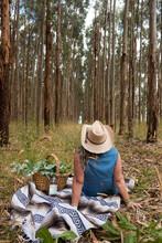 Woman Walking Through Blue Gum Plantation