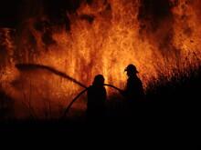 Firemen Fighting A Grass Fire ...