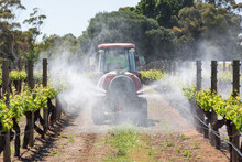 Agriculture Winery Spraying