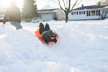 Little Boy Sledding In Yard Wi...