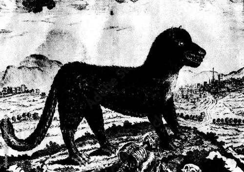 gravure ancienne du XVIII siècle montrant la bête du gévaudan ayant tué des gens Canvas Print
