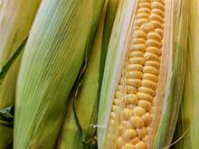 Close-up Of Ears Of Corn - Pee...