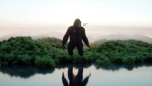 Giant Gorilla And Helicopter I...