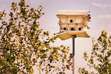 Derelict Purple Martin Birdhouse