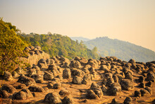 Khao Kho National Park Is A National Park In The Area Of Lom Kao District, Lom Sak District, Khao Kho District And Mueang Phetchabun District Phetchabun