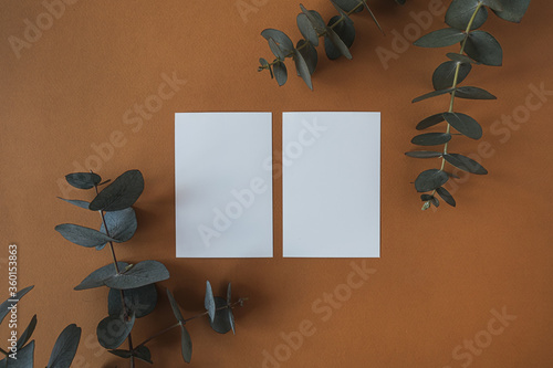 Blank paper sheet cards with empty copy space, dry eucalyptus branch on deep red background. Flat lay, top view business mock up template