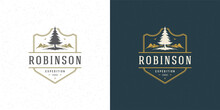 Forest Camping Logo Emblem Outdoor Adventure Leisure Vector Illustration Mountain And Pine Tree Silhouette