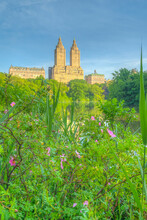 Central Park, New York City At The Lake