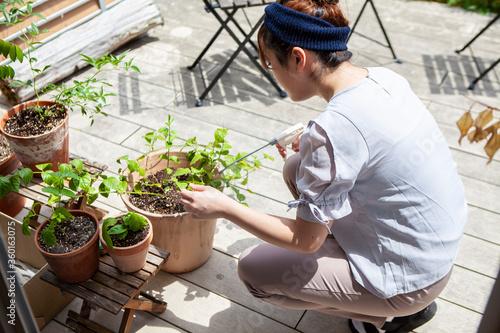 植物の世話をする女性 Wallpaper Mural