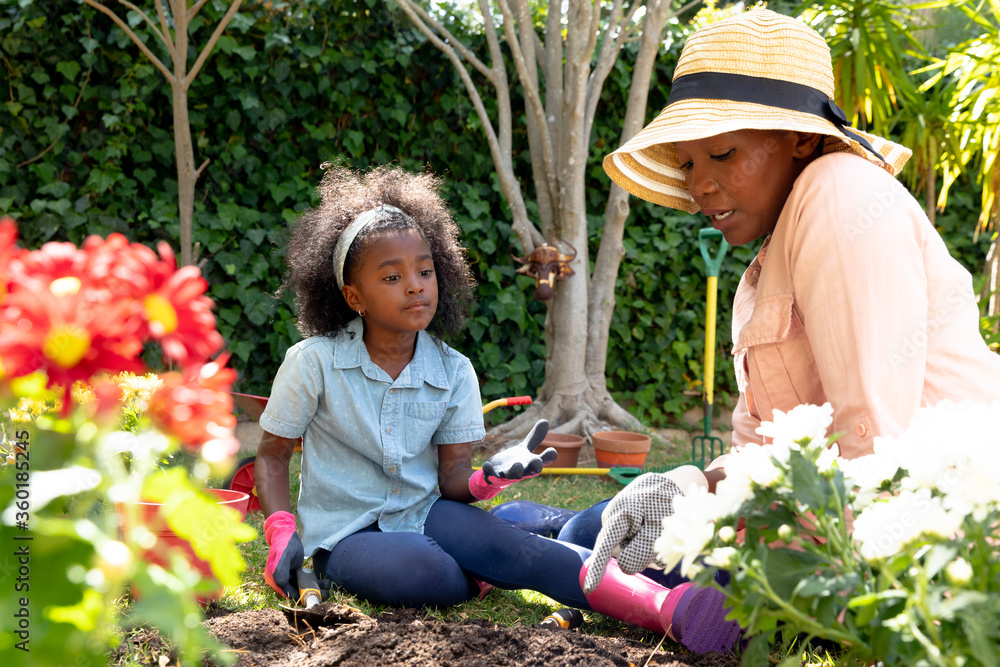 Fototapeta African American girl and her grandmother planting flowers at their garden